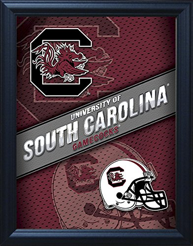 South Carolina Gamecocks 3D Lenticular Framed Poster, Optical Illusion Art Décor Picture. Perfect for fans of Football, Baseball, Basketball, Softball, Alumni! Officially Licensed NCAA Merchandise