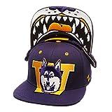 zephyr menace hat - Washington Huskies Purple