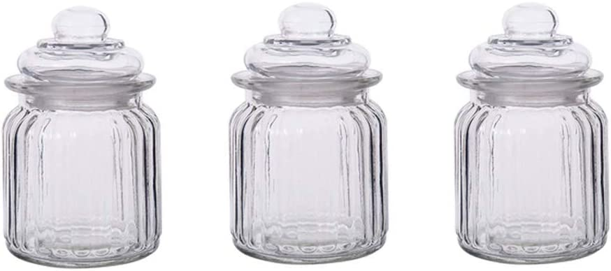 Danmu Art Lot de 3 bocaux en verre avec couvercles 250 ml 7,5 cm de diam/ètre Hauteur 13 cm.