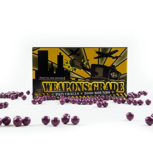 WPN Weapons Great Paintballs (2000 Piece), Purple by WPN
