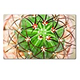 Luxlady Natural Rubber Large Table Mat IMAGE ID: 24171703 Cactus Melocactus diersianus