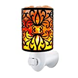 MaymiiHome Himalayan Salt Night Light Lights Lamp,Sea Salt Crystal Chunk in Unique Floral Design Lantern Basket, Cylinder Fire Bowl,UL Approved Plug 2 Bulbs,Pulg in Salt Wall Light Air Purifier