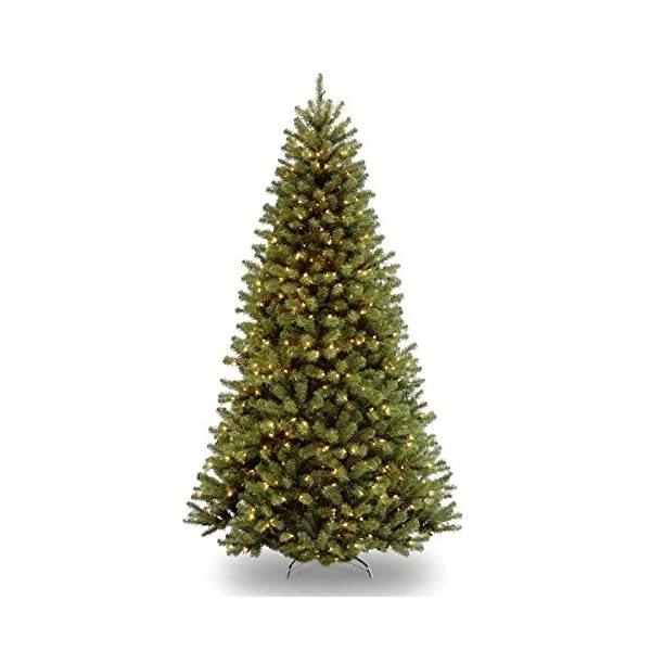 National-Tree-North-Valley-Spruce-Tree-with-Clear-Lights