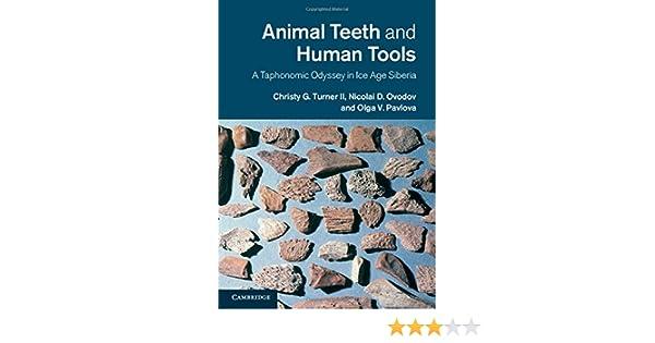Amazon Animal Teeth And Human Tools A Taphonomic Odyssey In Ice Age Siberia 9780521020381 Christy G Turner II Nicolai D Ovodov Olga V Pavlova