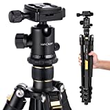 K&F Concept TM2324 62'' Lightweight and Compact Aluminum Camera Tripod with 360 Panorama Ball Head Quick Release Plate for Canon Nikon Sony DSLR DV Black