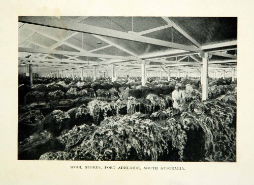 1910 Print Wool Stores Port Adelaide South Australia Fleece Raw Agricultural - Original Halftone - Stores Australia