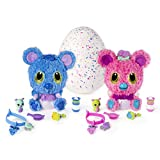 Hatchimals HatchiBabies Koalabee Hatching Egg with Interactive Pet Baby (Styles May Vary) Ages 5 and Up