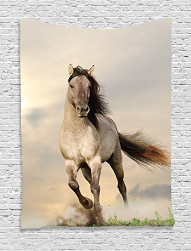 Ambesonne Animal Decor Collection, Wild Young Stallion Horse Running at Sunset Male Power Nake Muscular Physique Nobility Photo, Bedroom Living Room Dorm Wall Hanging Tapestry, - Girl Teen Nake