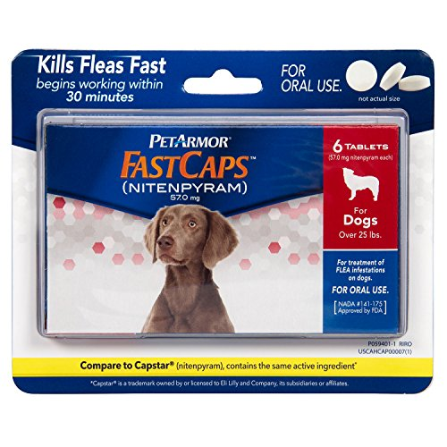 PetArmor FastCaps (nitenpyram) Oral Flea Control Medication, 25 lbs and Over, 6 count (Best Over The Counter Flea Treatment)