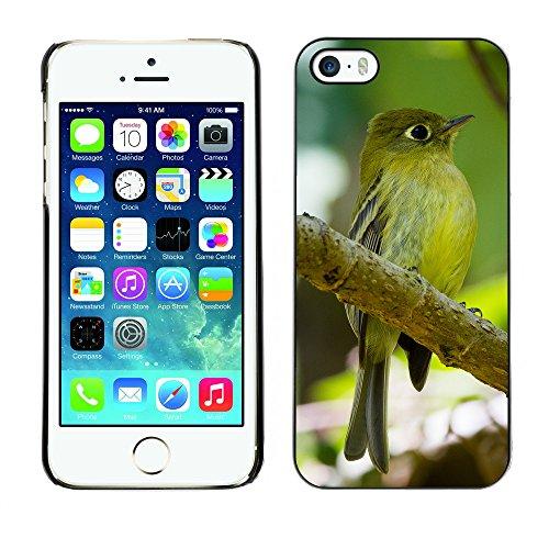Premio Sottile Slim Cassa Custodia Case Cover Shell // F00024839 oiseau vert // Apple iPhone 5 5S 5G