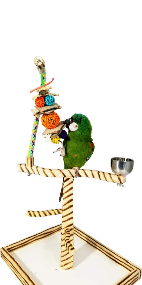 Birds LOVE Bird Play Gym Tabletop w Cup, Toy Hanger and Toy, Bengal TigerTail Stand - Large by Birds LOVE