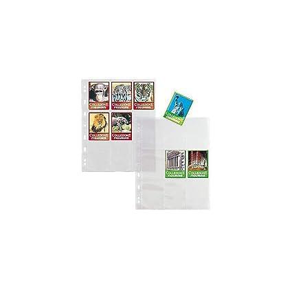 2f35e230d5 Sei Rota 662505 Busta Porta Figurine: Amazon.it: Cancelleria e ...
