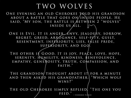 Cherokee Indian Poster Inspirational Poster Motivational Poster Two Wolves 18x24