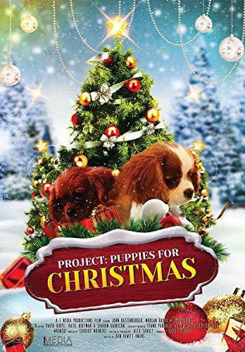 Project: Puppies for Christmas]()
