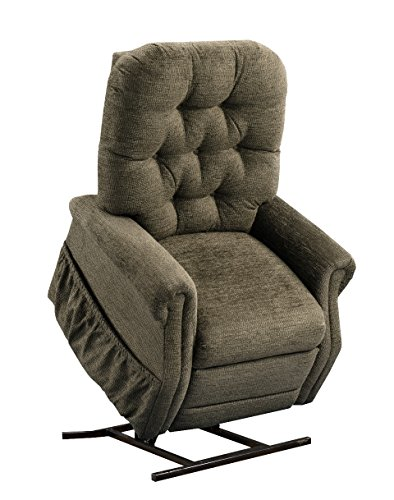 Petite Lift Chair (Medlift 1555P-EM Encounter Petite Two Way Reclining Lift Chair, Mushroom)