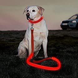 Illumenfun LED Dog Leash - USB Rechargeable Nylon Glowing Dog Leash, 47.2 Inch Reflective Light Up Dog Lead for Your Dogs Walking at Night (Red)