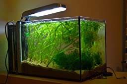 aquarium beleuchtung aquarium klemmlampe 18w haustier. Black Bedroom Furniture Sets. Home Design Ideas