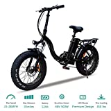 vtuvia Folding Electric Bicycle with 500W Motor and 48V 12AH Removable Lithium-Ion Battery 20 Inch Fat Tire Bike City Mountain E-Bike for Adults(Black)