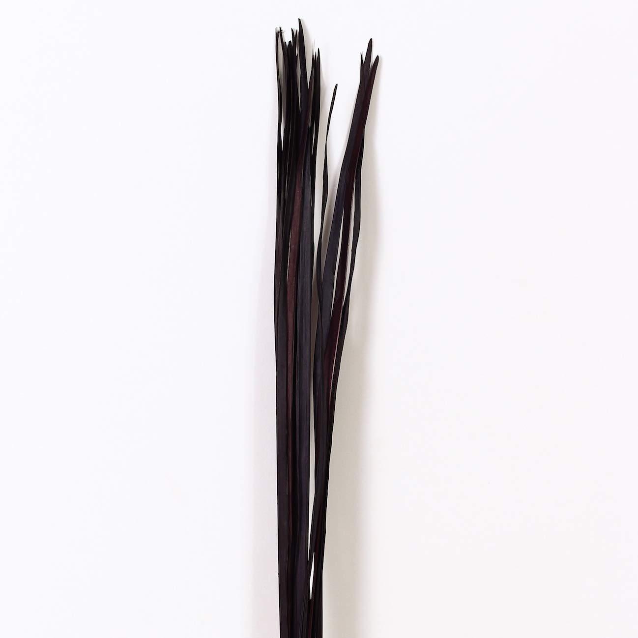 Leewadee Secco colorato Foglia di Palma Mazzo per vasi da Terra Decorativi fascione ramoscello d'erba 120 cm, Foglia di Palma, Viola