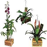 "10"" Natural Wooden Square Hanging Basket Outdoor Garden Planters (1)"