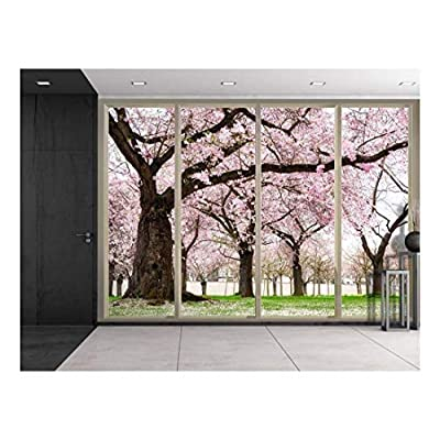 Petals Falling from Cherry Blossom Trees Wall Decor...