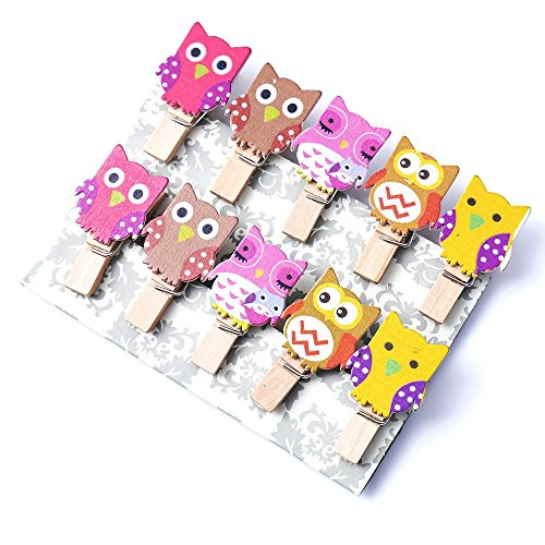 WSERE Wood Owl Shape Photo Paper Clips Holder Mini Decorative Clothespins Photography Backdrop Clip with 5ft Jute Twine, 30 Pieces(Style E) -