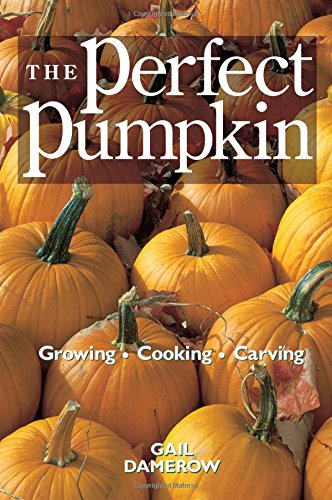 The Perfect Pumpkin: