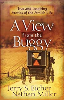 Book Cover: A View from the Buggy