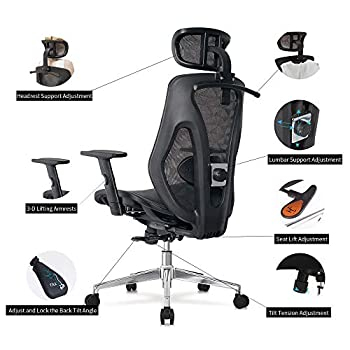 Image of Allguest Ergonomic Adjustable Office Chair with Adjustable Lumbar Support-High Back with Mesh Seat Cushion-Adjustable Head-Arm Rests,Seat Height-Reclines AG-8015MH Home and Kitchen