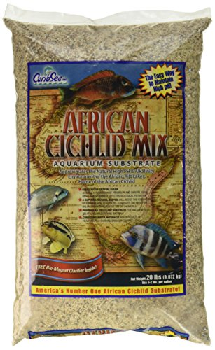 Carib Sea ACS00220 African Cichlid Mix for Aquarium, 20-Pound