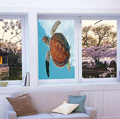 - YOLIYANA Privacy Frosted Decorative Vinyl Decal Window Film,Turtle,for Bathroom, Kitchen, Home, Easy to Install,Endangered Species Sea Animal in Tropic Caribbean Waters,24''x36''