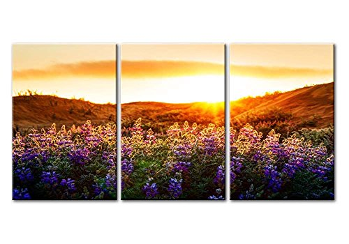 Canvas Print Wall Art Painting For Home Decor Floral Landscape Of Purple Provence Lavender Field With Sunrise Sunshine 3 Pieces Panel Paintings Modern Giclee Stretched And Framed Artwork The Picture For Living Room Decoration Flower Pictures Photo Prints On Canvas - 3 Floral Art