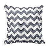 Slate Grey And White Chevron Zig Zag Pillow Covers 20 x 20