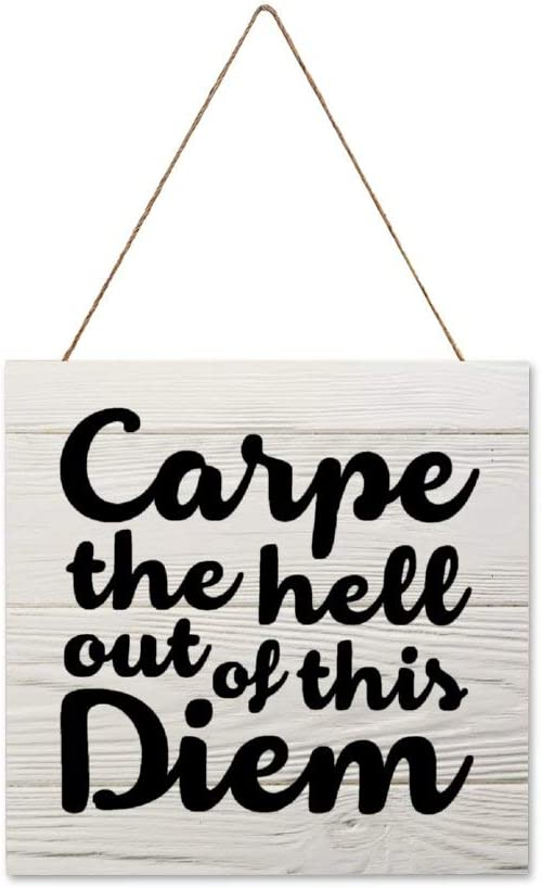 BYRON HOYLE Carpe The Hell Out of This Diem Framed Wood Sign,Wooden Wall Hanging Art,Inspirational Farmhouse Wall Plaque,Rustic Home Decor for Living Room,Nursery,Porch,Gallery Wall,Housewarming Gift