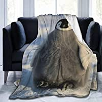 Delerain Orchids and Butterfly Flannel Fleece Throw Blanket Living Room/Bedroom/Sofa Couch Warm Soft Bed Blanket for Kids Adults All Season Ultra Soft