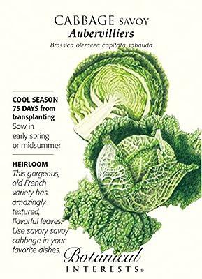 Aubervilliers Savoy Cabbage Seeds - 2 grams