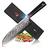 TUO Cutlery 7'' Santoku Knife - Damascus Kitchen Chef's Knives - Japanese AUS-10 HC Stainless Steel Cutting Core Blade - Hammered Finished and Rose Damascus Pattern - G10 Handle - Ring-H Series