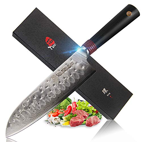 TUO Cutlery Santoku Knife - Japanese AUS10 Damascus 67-Layers Steel - Hollow Ground Edge - Non Sticky - Hand Hammered Blade Fifnished - Dishwasher Proof - G10 Handle - Ring-H Series 7