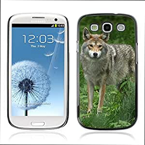 Carcasa Funda Case // V0000959 Wolf Animal Pattern // Samsung Galaxy S3 i9300
