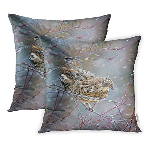 (Emvency Set of 2 Throw Pillow Covers Decorative Cases Animal Ruffed Grouse Perched in Tree Snowstorm Bird 18x18 Inch Cover Cushion Pillowcase Square Case Print)