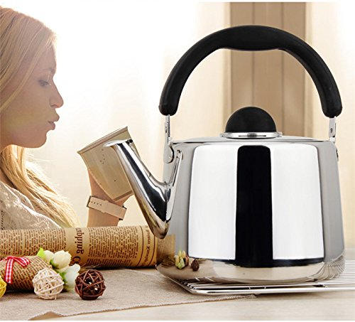 Whistling Tea Kettle - 6 Quart Tea Pot Stainless Steel Tea Kettle for Electric or Gas Stovetop - Cool Cute Modern Tea Kettle Stove Top Teapot Hot Water Whistle - Small Retro Metal Tea Kettle