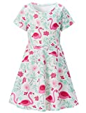 ALISISTER 5T Flamingo Dress Girls Pink Animal Sundress Comfy 80S Vintage Birthday Party Outfits Short Sleeved Twirl Dresses Home Playwear Blue