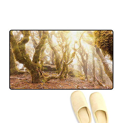Doormat,Morning Sun Rays Mist in Virgin Mountain Forest Moss on Trees Natural Paradise,Bath Mat 3D Digital Printing Mat,Green Brown,24