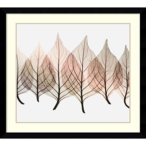 Framed Art Print, 'Celosias' by Steven N. Meyers: Outer Size 39 x 35