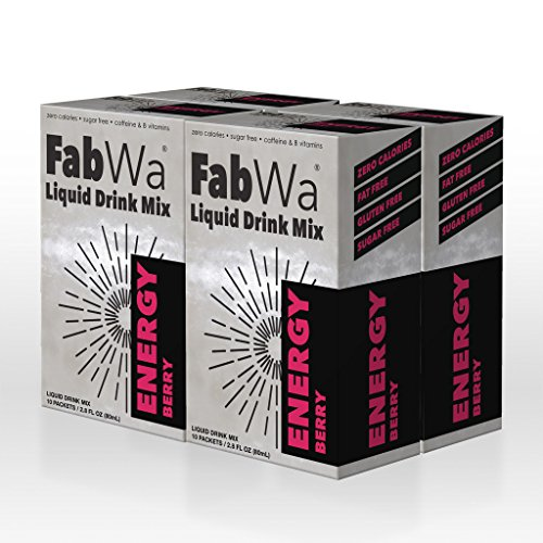 FabWa Liquid Energy Drink Mix - Berry - 4 Box Multi Pack