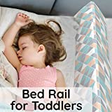 Bed Rails for Toddlers - Toddler Bed Rail Keep Them Safe at Night from Falling Out of Bed - Includes Belt with Clip to Hold in Place + Additional Extension to Belt!...