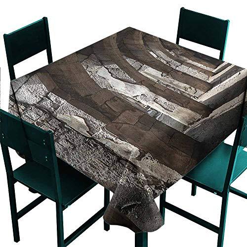 DONEECKL Square Tablecloth Ancient Dark Shadows Stone Portico Picnic W50 xL50