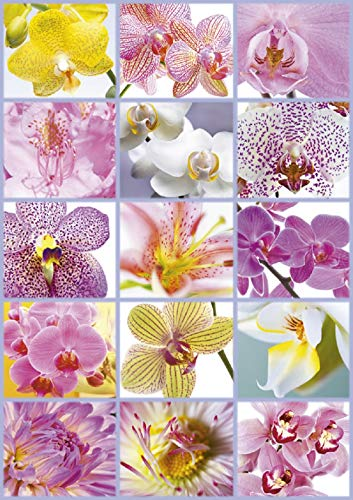 (Educa Collage of Flowers Puzzle (1500 Piece), One Color)