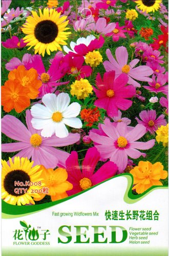 Wildflowers Seed 200 Wildflower Flower Colorful Natural Beautiful Vitality K008 By Mikedaoer