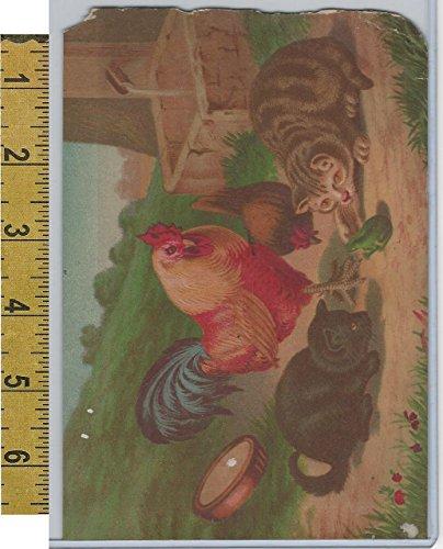 Victorian Card, 1890's, Animals, Chicken, Cat, Frog, Farm (V)